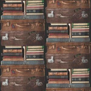 Koffer Bücher